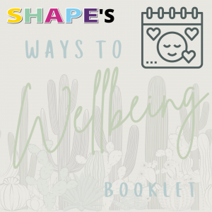 Copy of Wellbeing booklet launch